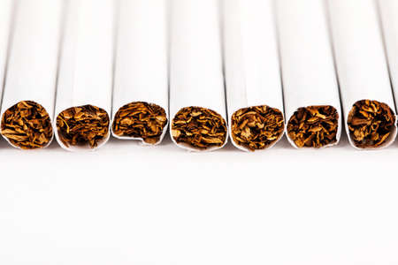 Close-up of tobacco cigarettes on a white background.