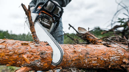 Close up professional chainsaw cuts firewoods.