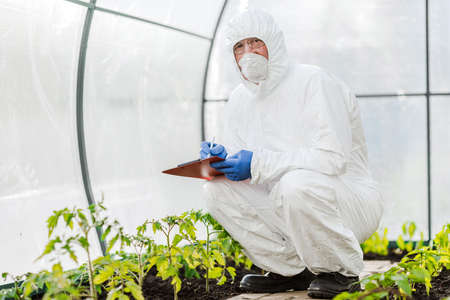 A scientist or microbiologist adds fertilizer to the soil. The concept of biotechnology and gmo.