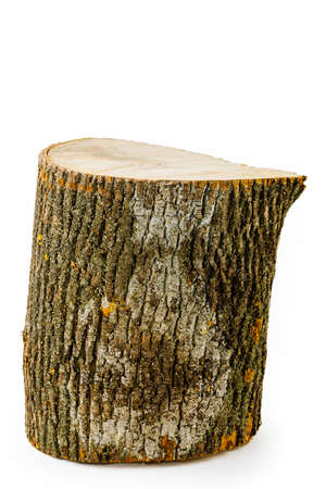 Wooden stump isolated on white background. Round log tree with annual rings in the form of wood texture. Standard-Bild