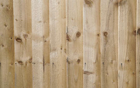 burl wood: wood boards texture background from fence