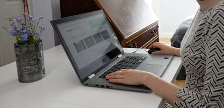 Side view  closeup on young woman in front of laptop computer. Female in grey dress shoppig and working online Reklamní fotografie