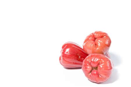 장미 사과