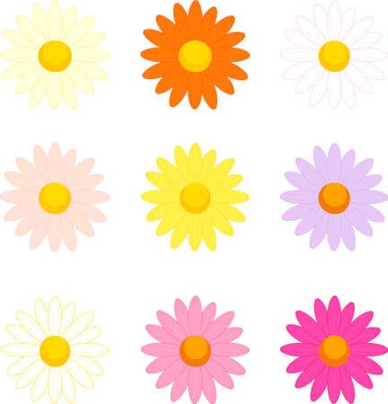 Colorful Margaret flower icon set