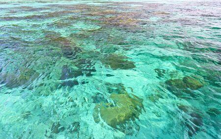 Coral reef under Aquamarine sea in Koh Rok Thailand