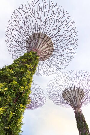 hectares: SINGAPORE-MARCH 1: Dayview of The Supertrees Grove at Gardens by the Bay on MARCH 1, 2013 in Singapore. Spanning 101 hectares, and five-minute walk from Bayfront MRT Station.