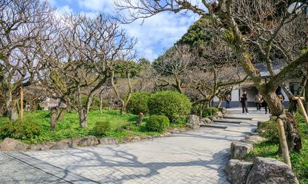 FUKUOKA, JAPAN - NOVEMBER 12,2015 : Dazaifu shrine in Fukuoka, Japan on November 12, 2015. Built over Sugawara no Michizanes grave, one of main shrines dedicated to Tenjin, the deified form of Michizane.