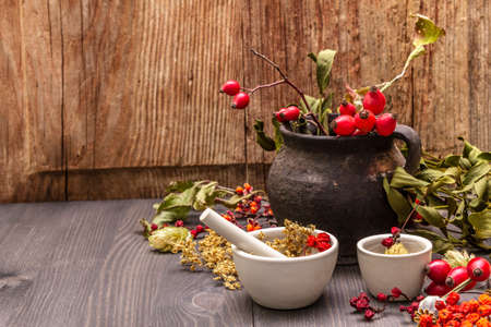 Halloween concept background. Witch bowler, mistletoe, elderberry. Dry herbs, flowers, fresh berries. Mortar and pestle, seeds, old wooden boards, copy space Stock fotó