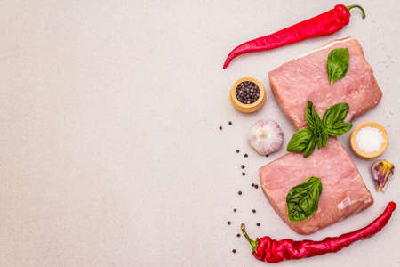 Raw pork meat loin with fresh vegetables and dry spice. Animal protein healthy cooking concept. Chili and black pepper, garlic, basil, sea salt. Light stone concrete background, copy space, top view Zdjęcie Seryjne