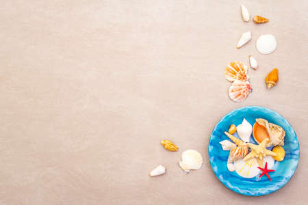 Seashells summer background. Lots of different seashells piled together in blue plate, copy space, top view