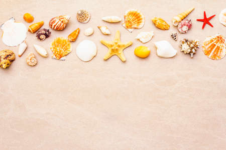 Seashells summer background. Lots of different seashells piled together. For card, frame, flat lay, copy space, top view