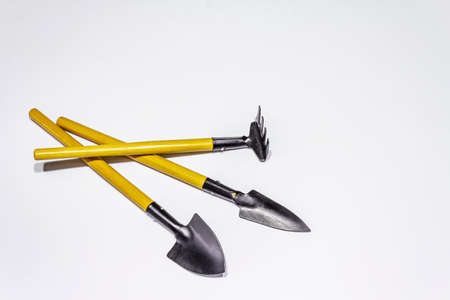 Garden tools isolated on white background. Plant care concept. Shovels and rake