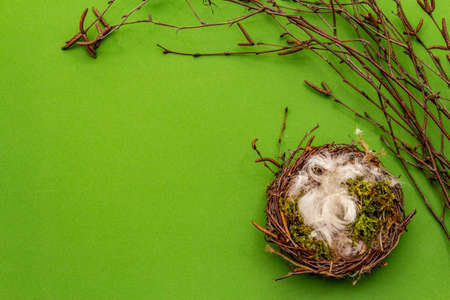 Easter zero waste decor, DIY concept. Design element and decor. Bird nest, moss, birch branches, feather. Green background, top view, copy space