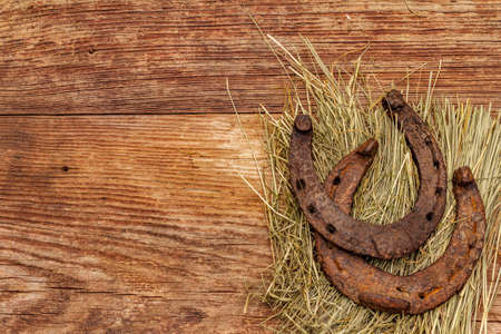 Two cast iron metal horse horseshoes on hay. Good luck symbol, St.Patrick's Day concept. Old wooden background, horse accessories, top view