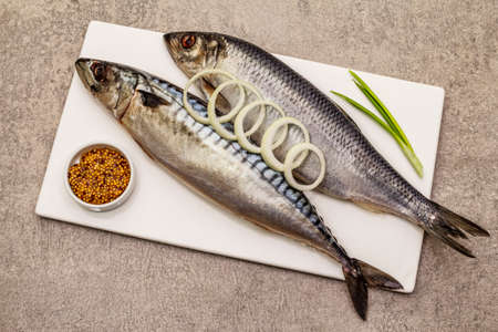Pickled whole mackerel and herring. Traditional seafood delicacy, healthy eating concept. Stone concrete background, top view