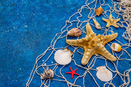 Seashells summer background. Lots of different seashells piled together, sea stars, fishing net. Navy blue nautical background