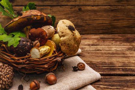 Fresh forest mushrooms. Assorted gourmet porcini and boletus, oak leaves. Old wood plank background, copy space Standard-Bild