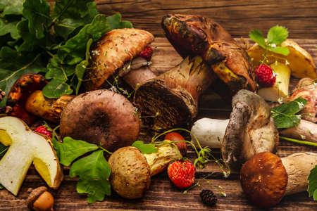 Fresh forest mushrooms. Assorted porcini, boletus, russula, blusher, oak leaves, strawberries. Old wood plank background, close up