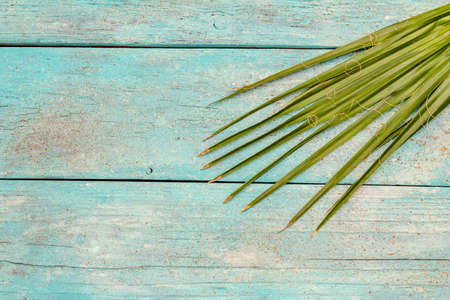 Palm leaf on a trendy turquoise wooden background. The concept of vacation, spa rest, relaxation, copy space, top view