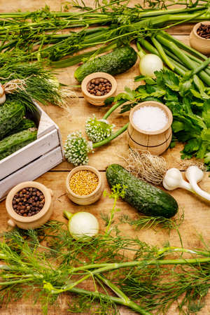 Pickling vegetables concept. Cooking process, spices, fresh fragrant herbs. Ripe cucumbers, old wooden table