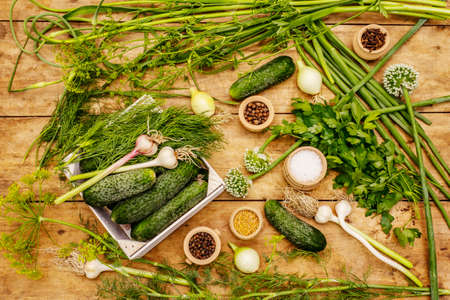 Pickling vegetables concept. Cooking process, spices, fresh fragrant herbs. Ripe cucumbers, old wooden table 스톡 콘텐츠