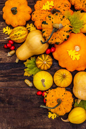 Harvest of various ripe pumpkins, leaves and rosehip berries. Colorful festive background, Thanksgiving or Halloween Day. Old wooden boards background, top view Banque d'images