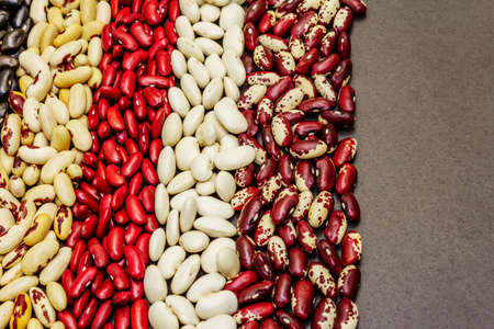 Set of various dry legumes scattered in stripes, indispensable protein for a healthy lifestyle. Assorted different types of beans on blackstone background, copy space