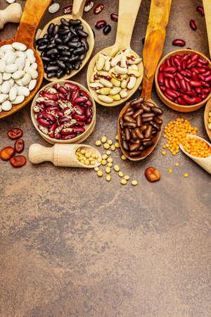 Set of various dry legumes in wooden spoons, indispensable protein for a healthy lifestyle. Assorted different types of beans. Stone concrete cooking background, top view