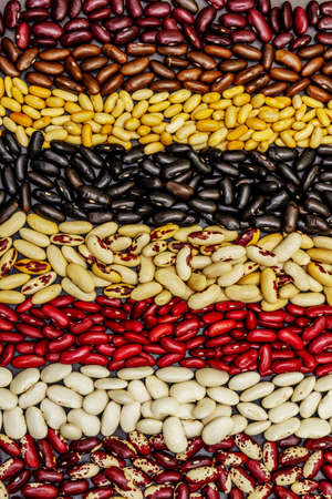 Set of various dry legumes scattered in stripes, indispensable protein for a healthy lifestyle. Assorted different types of beans on blackstone background, top view