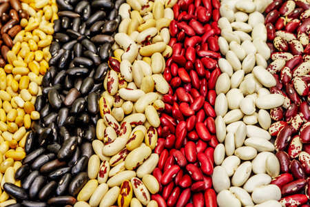 Set of various dry legumes scattered in stripes, indispensable protein for a healthy lifestyle. Assorted different types of beans on blackstone background, close up