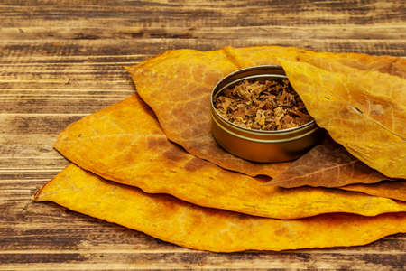 Shredded tobacco in a tin box. High quality cured big leaves to make cigars. Vintage wooden boards background, copy space