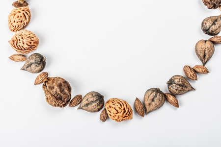 Wreath or Frame from Juglans cordiformis Maxim or heart-shaped walnut isolated on white background. Whole nuts, peach and olives seeds, flat lay, mockup, template