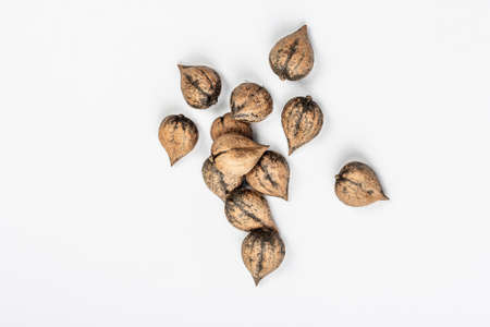 Ripe Juglans cordiformis Maxim or heart-shaped walnut isolated on white background. Young green and unpeeled whole nuts, flat lay, mockup, template Stock Photo