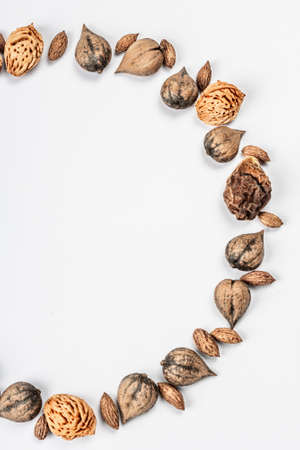 Wreath or Frame from Juglans cordiformis Maxim or heart-shaped walnut isolated on white background. Whole nuts, peach and olives seeds, flat lay, mockup, template Stock Photo
