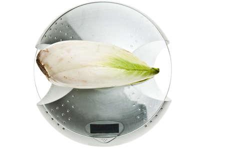 escarola: Escarola aislado en escala de alimentos