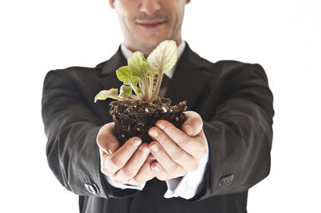 Closeup to plant in business man hand photo