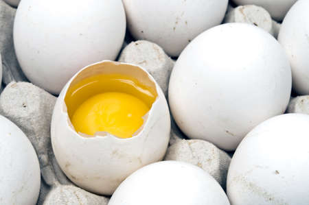 isolated full egg carton on white photo