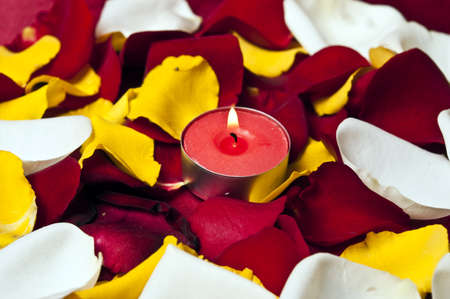 Candle and many rose petals photo