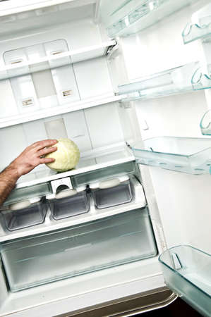Refrigerator close up with cabbage Stock Photo - 9346337