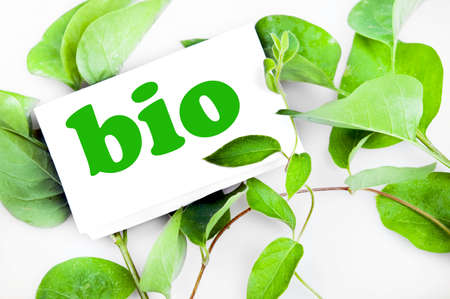 Bio message on green leaves Stock Photo - 10063286