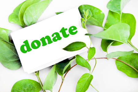 community help: Donate message on green leaves
