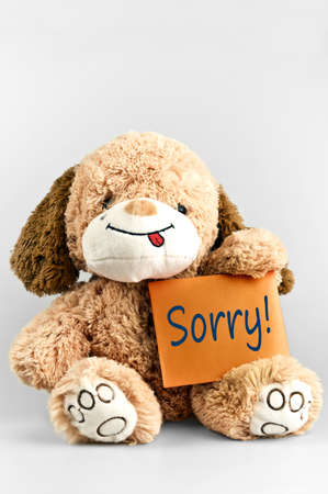 apology: Sorry message and toy on white Stock Photo