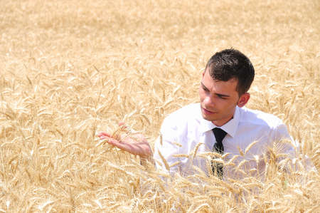 Business man standing in wheat photo