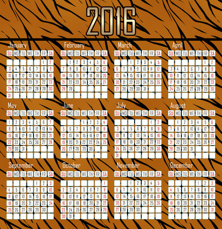 tiger skin: Illustration calendar for 2016 in tiger skin simple design