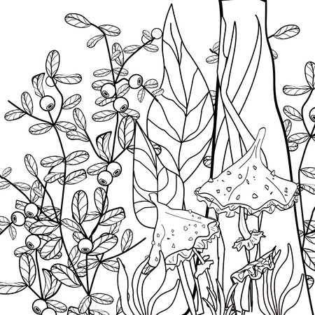 ornamental elements: Coloring page kids book with decorative floral ornamental elements illustration