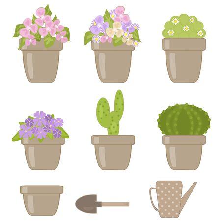 houseplants: Set of various houseplants isolated