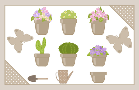 horticultural: Set of various houseplants isolated