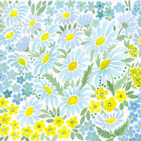 Watercolor camomile print on white background Stock Photo