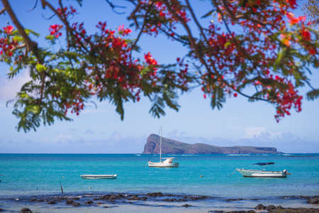 Cap Malheureux,view with turquoise sea and traditional flamboyant red tree,Mauritius island. High quality photo Stock Photo