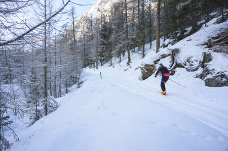 Cross-country ski on Roseg valley, Upper-Engadine valley, Grisons, Graubunden, Switzerland Stock Photo